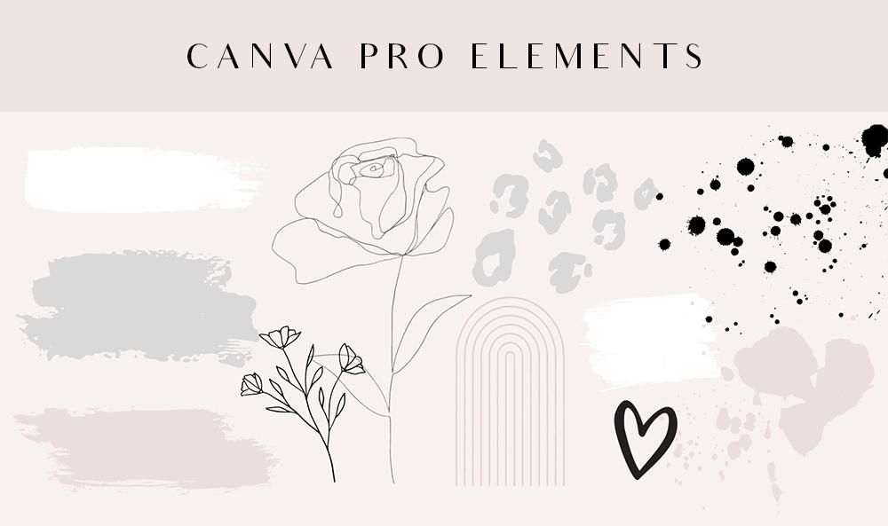 Canva Pro elements